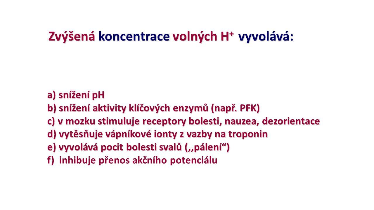 b) snížení aktivity klíčových enzymů (např. PFK)