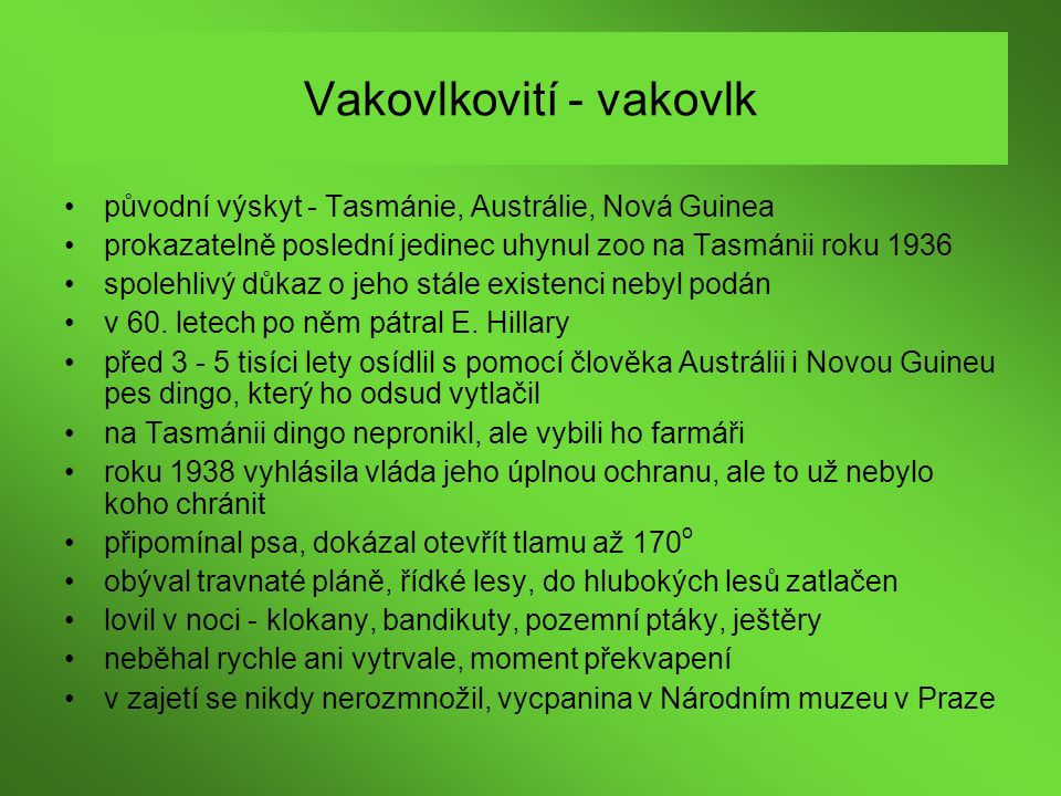 Vakovlkovití - vakovlk
