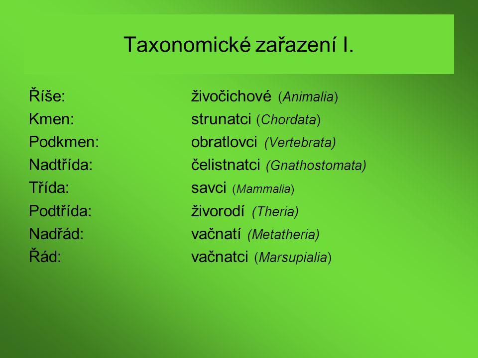Taxonomické zařazení I.