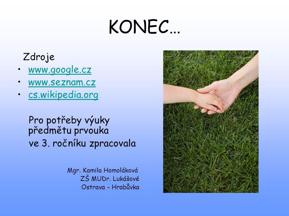 KONEC… Zdroje www.google.cz www.seznam.cz cs.wikipedia.org
