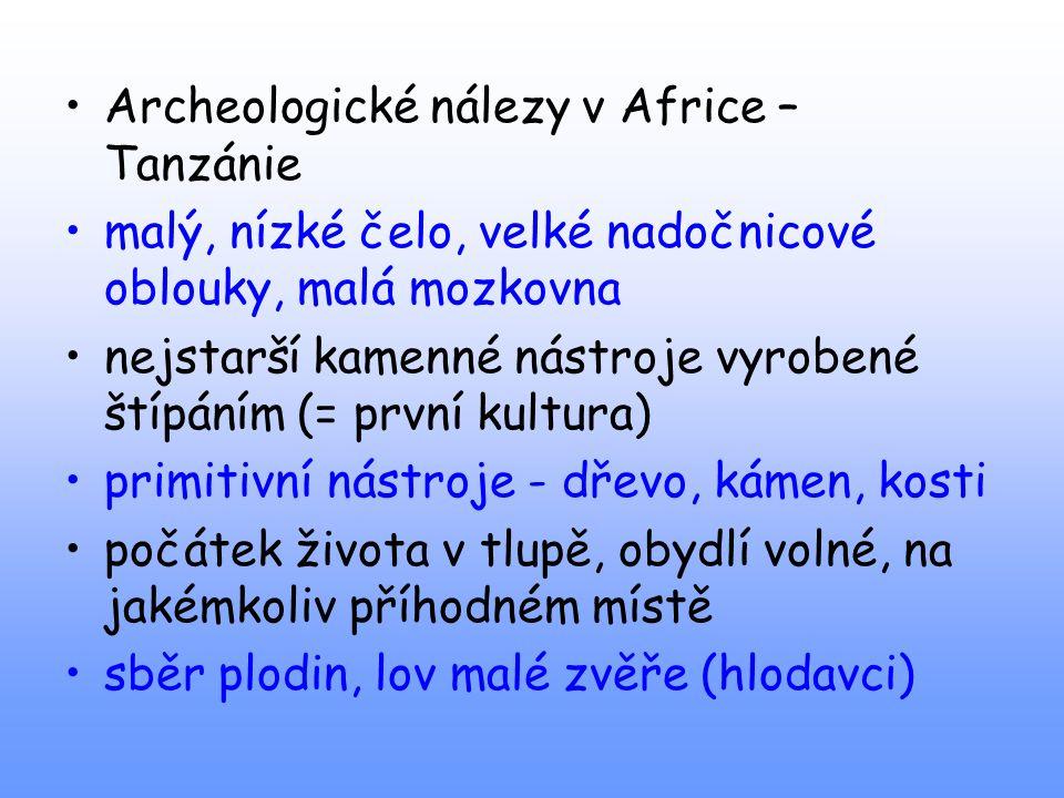 Archeologické nálezy v Africe – Tanzánie