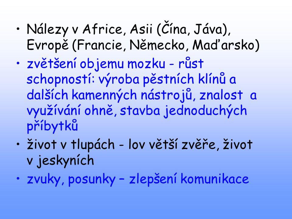 Nálezy v Africe, Asii (Čína, Jáva), Evropě (Francie, Německo, Maďarsko)