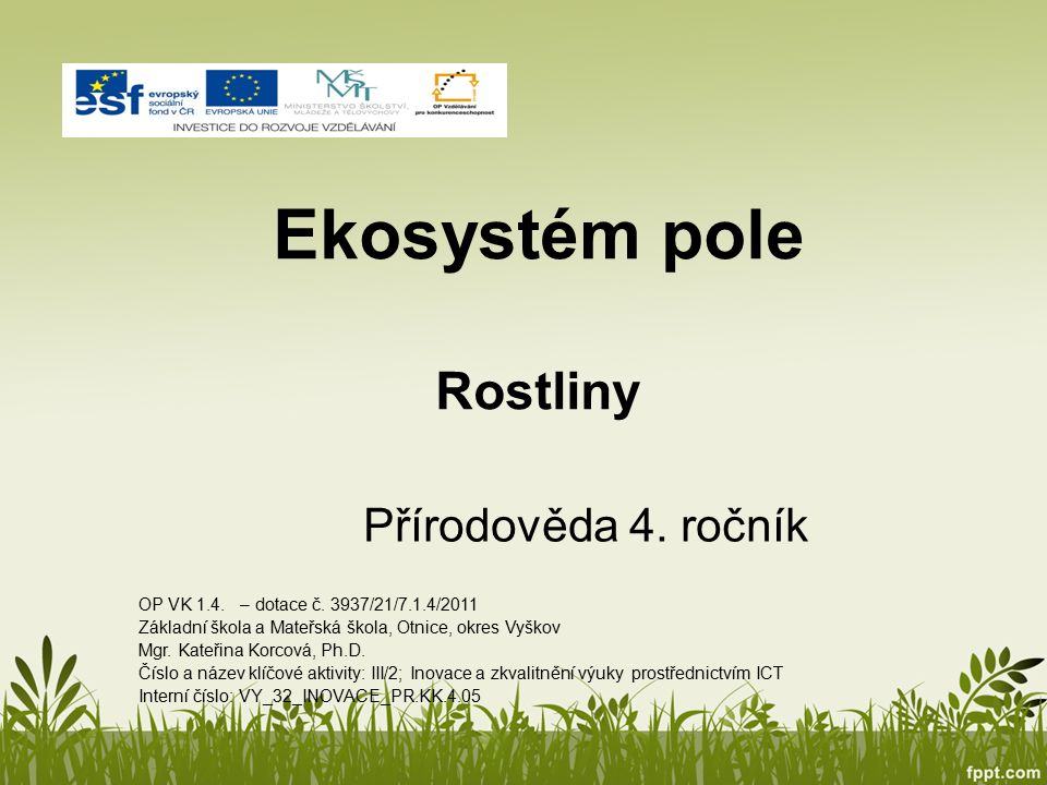Ekosystém pole Rostliny