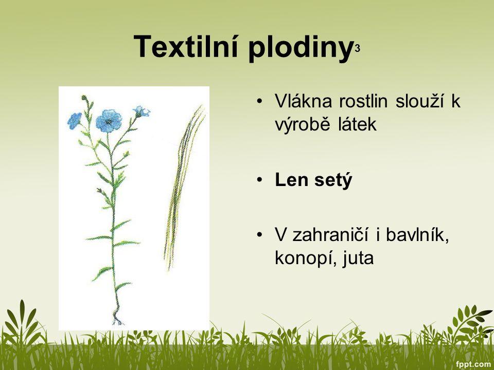 Textilní plodiny3 Vlákna rostlin slouží k výrobě látek Len setý