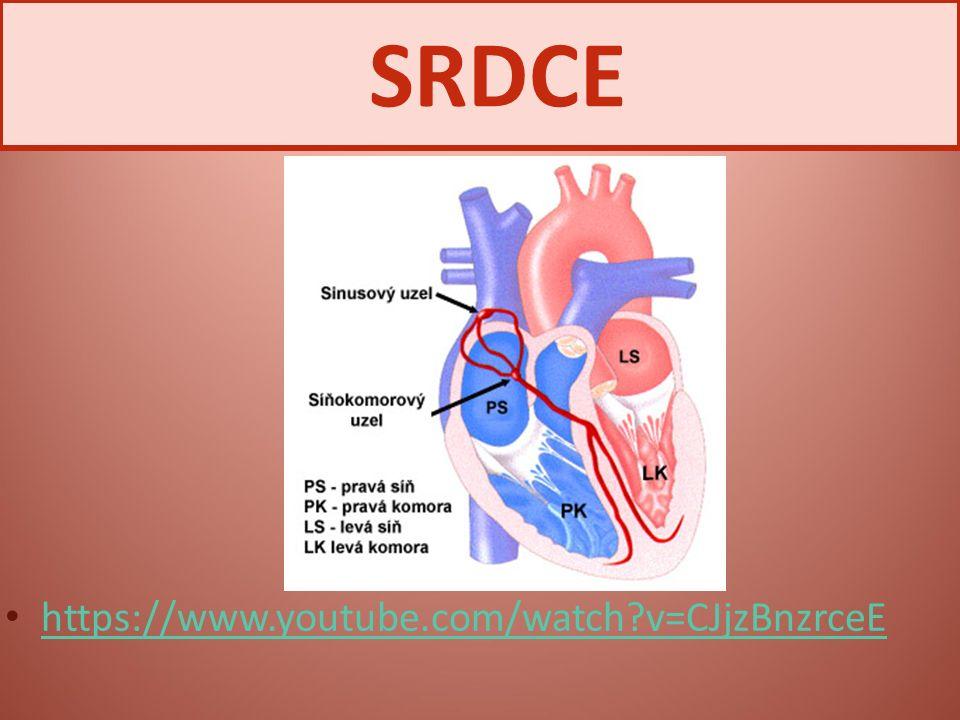SRDCE https://www.youtube.com/watch v=CJjzBnzrceE