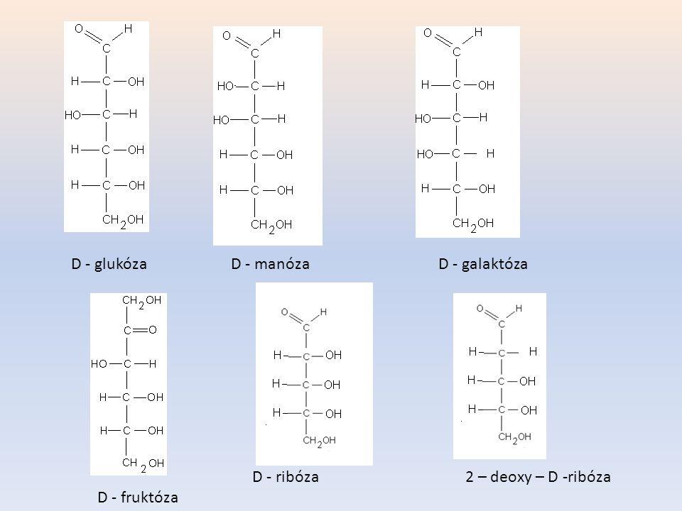 D - glukóza D - manóza D - galaktóza D - ribóza 2 – deoxy – D -ribóza D - fruktóza