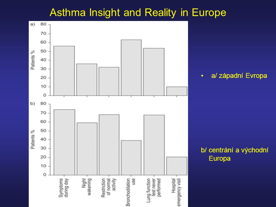 Asthma Insight and Reality in Europe