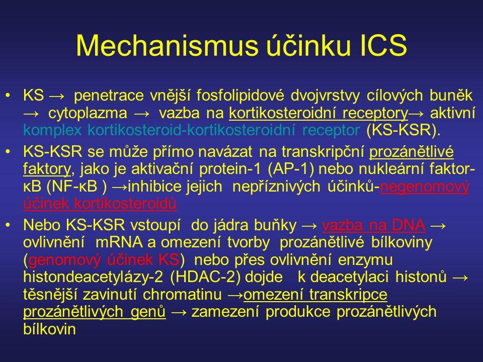 Mechanismus účinku ICS