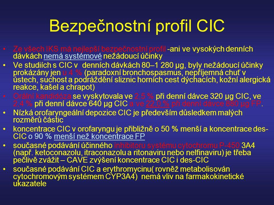 Bezpečnostní profil CIC