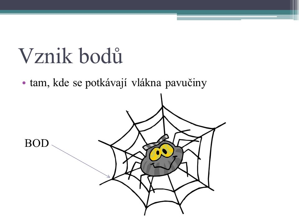 Vznik bodů tam, kde se potkávají vlákna pavučiny BOD