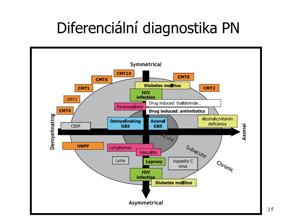 Diferenciální diagnostika PN