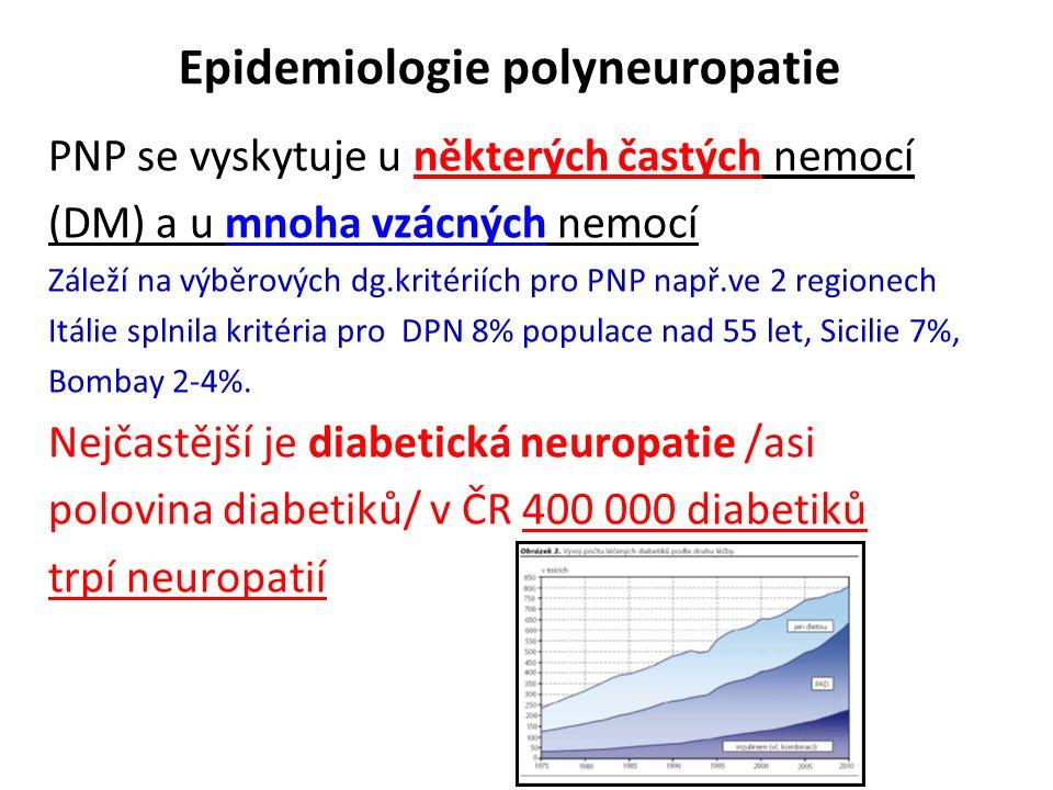 Epidemiologie polyneuropatie