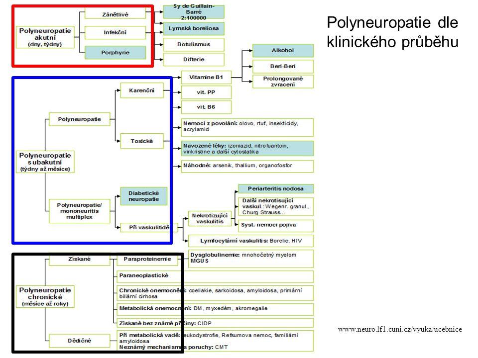 Polyneuropatie dle klinického průběhu