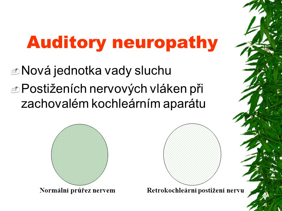 Auditory neuropathy Nová jednotka vady sluchu