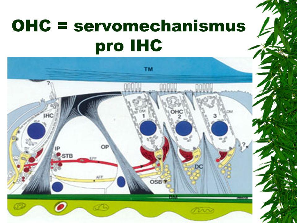 OHC = servomechanismus pro IHC