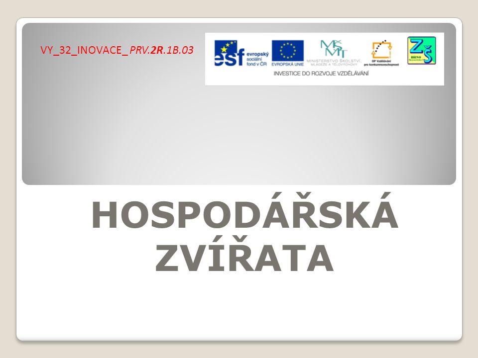 VY_32_INOVACE_ PRV.2R.1B.03 HOSPODÁŘSKÁ ZVÍŘATA