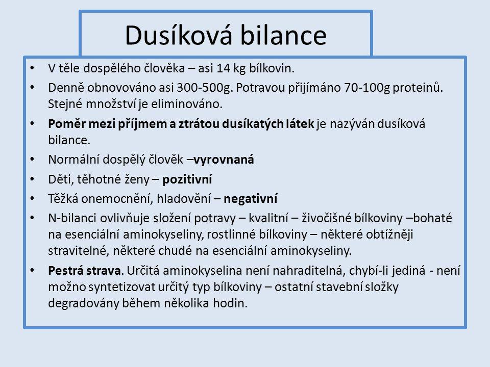Dusíková bilance V těle dospělého člověka – asi 14 kg bílkovin.
