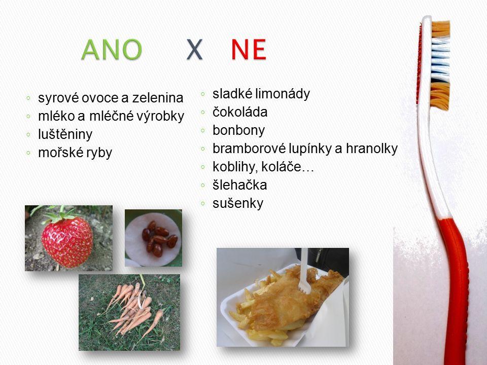 ANO X NE sladké limonády syrové ovoce a zelenina čokoláda