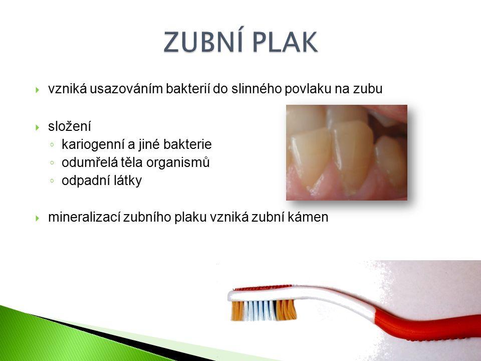 ZUBNÍ PLAK vzniká usazováním bakterií do slinného povlaku na zubu