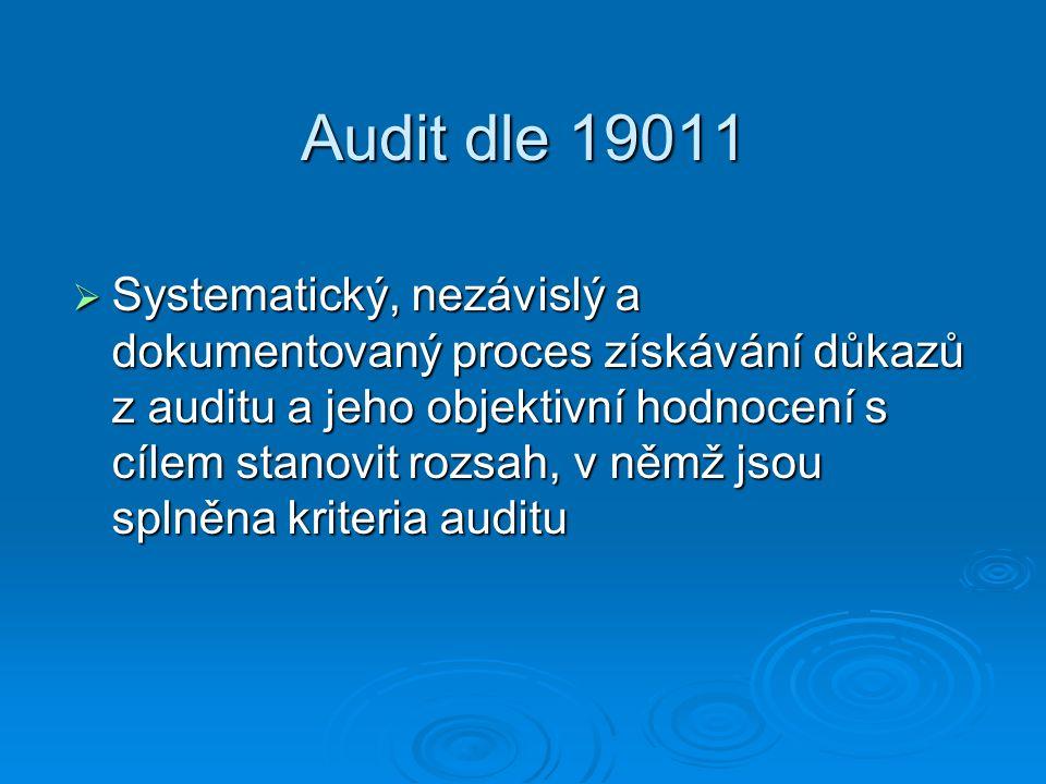 Audit dle 19011