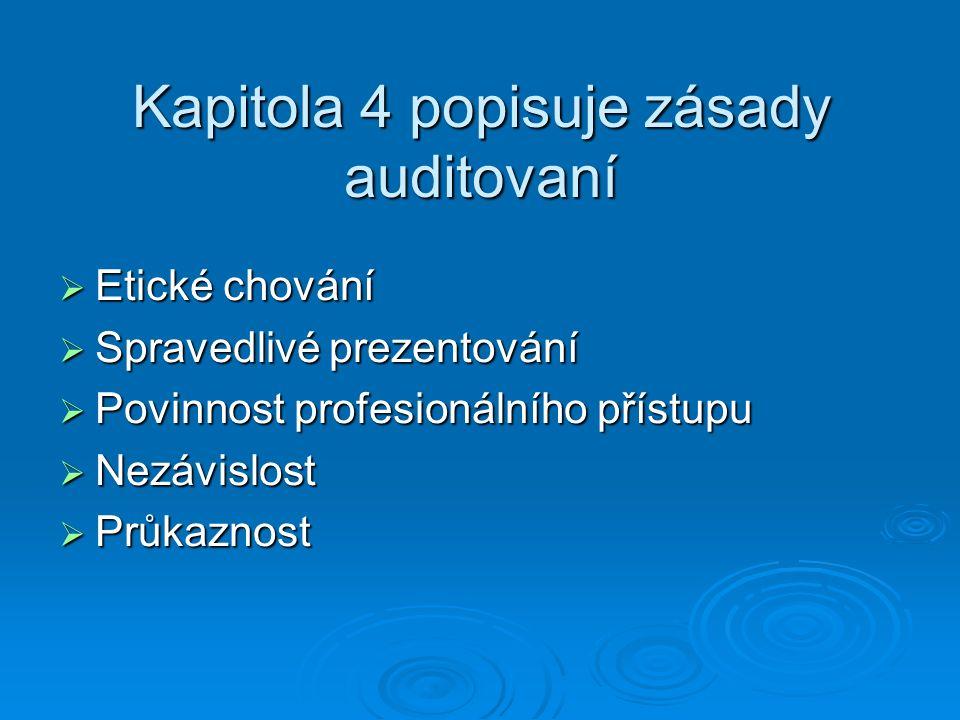 Kapitola 4 popisuje zásady auditovaní