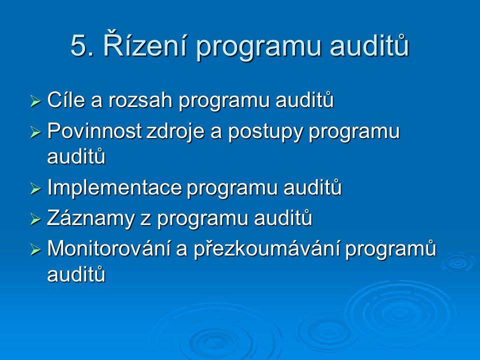 5. Řízení programu auditů
