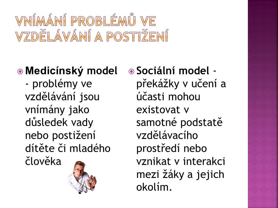 Vnímání problémů ve vzdělávání a postižení