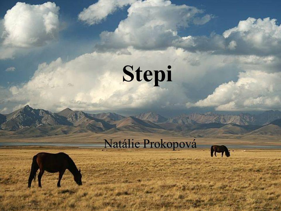Stepi Natálie Prokopová