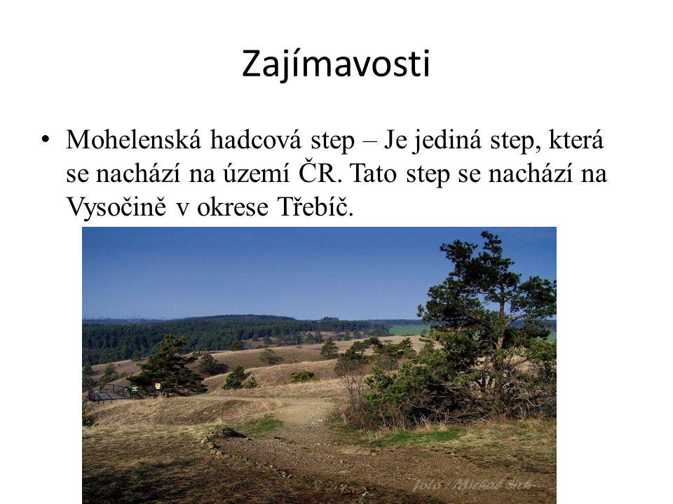Zajímavosti Mohelenská hadcová step – Je jediná step, která se nachází na území ČR.