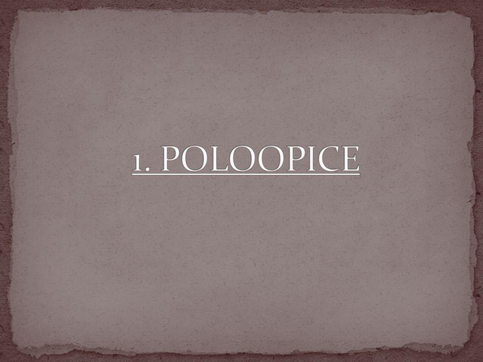 1. POLOOPICE