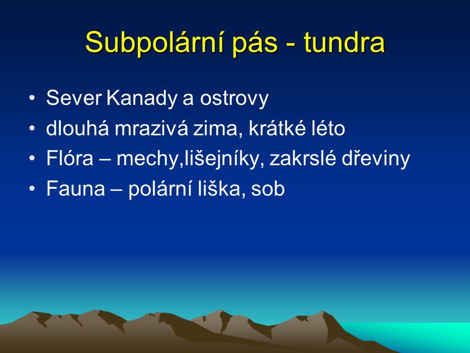 Subpolární pás - tundra