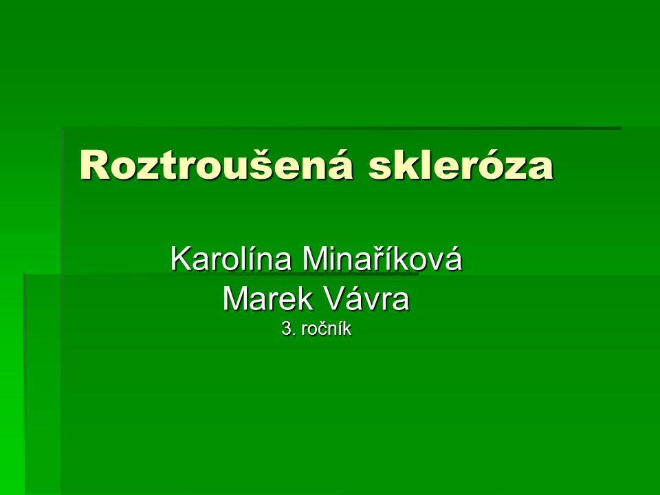 Karolína Minaříková Marek Vávra 3. ročník