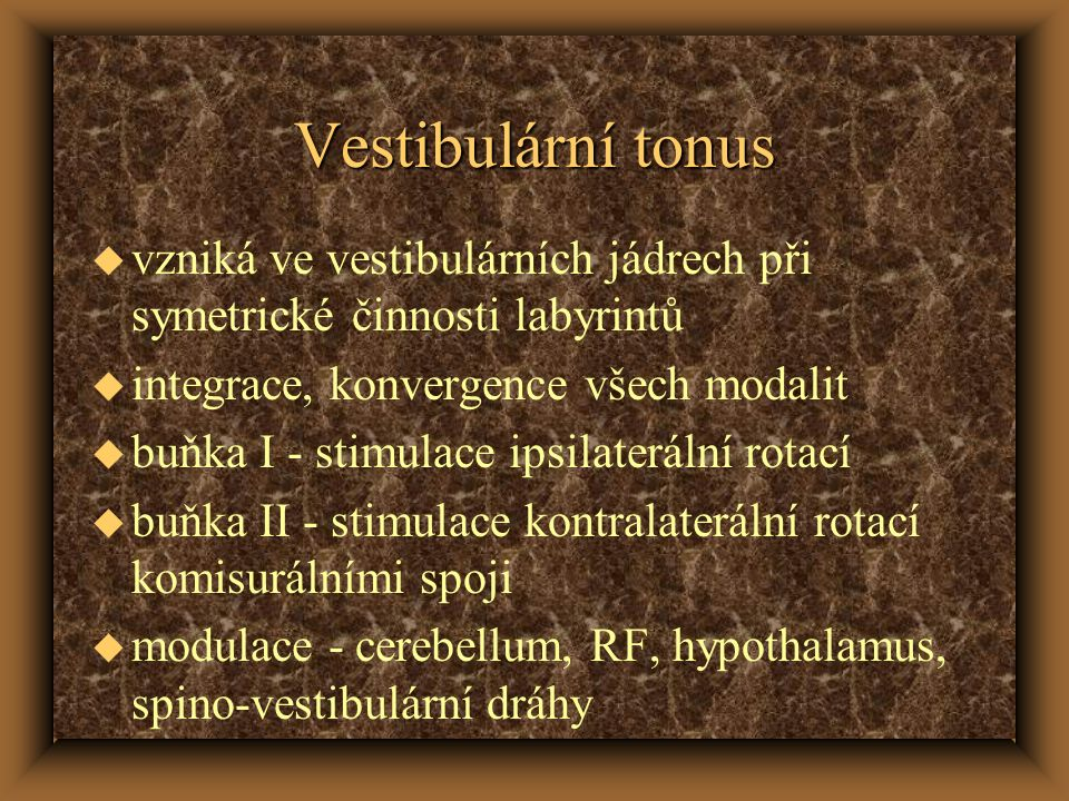 Vestibulární tonus vzniká ve vestibulárních jádrech při symetrické činnosti labyrintů. integrace, konvergence všech modalit.