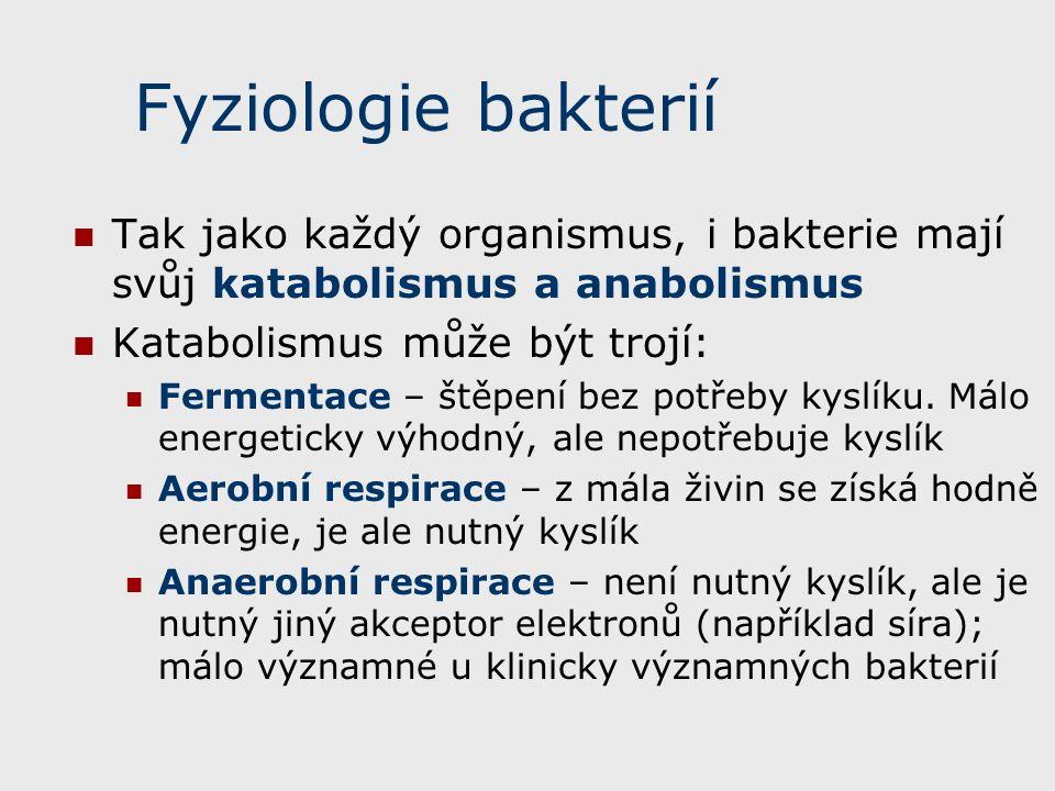 Fyziologie bakterií Tak jako každý organismus, i bakterie mají svůj katabolismus a anabolismus. Katabolismus může být trojí: