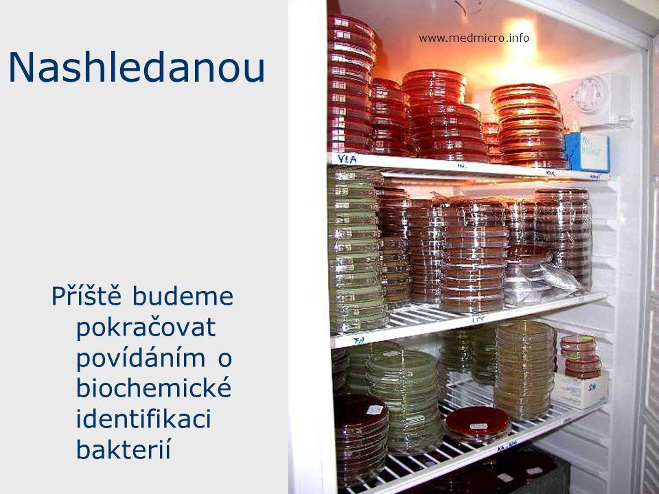 www.medmicro.info Nashledanou.