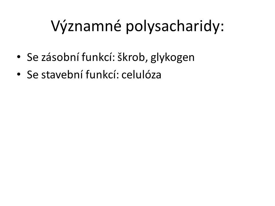 Významné polysacharidy: