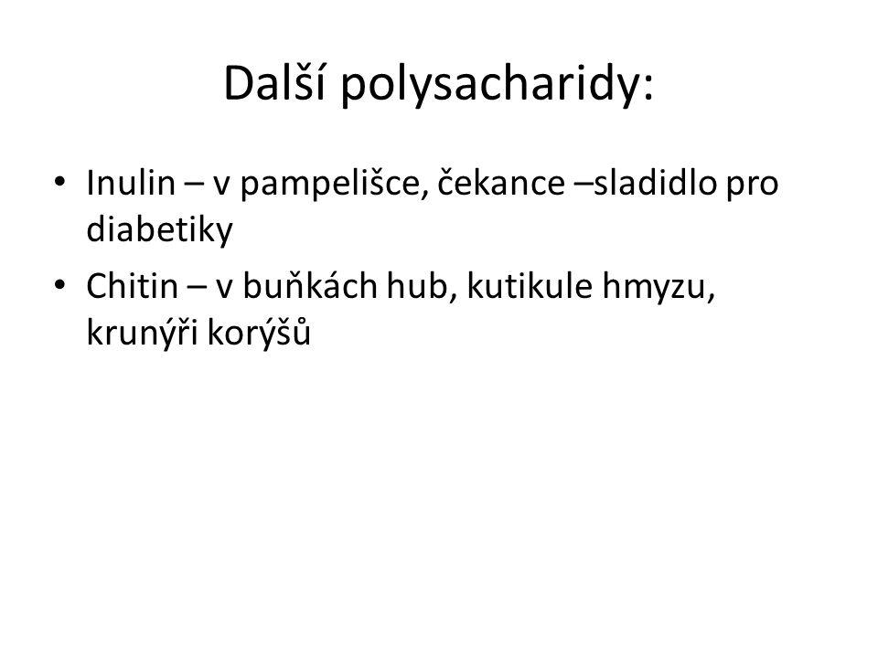 Další polysacharidy: Inulin – v pampelišce, čekance –sladidlo pro diabetiky.
