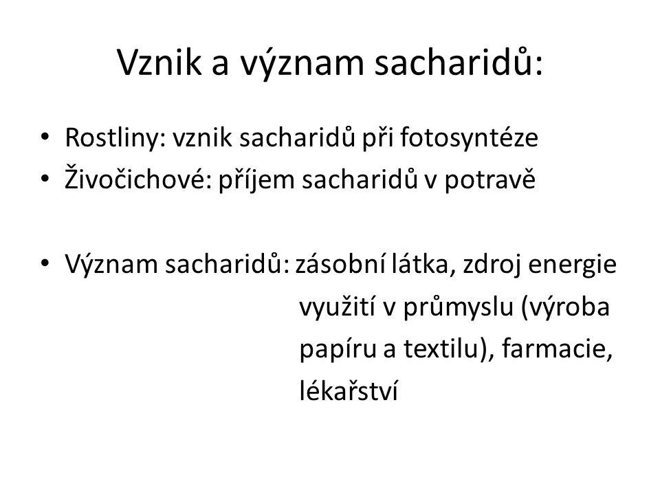 Vznik a význam sacharidů: