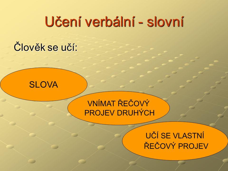 Učení verbální - slovní