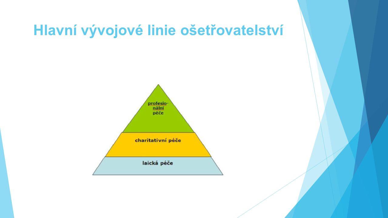 Hlavní vývojové linie ošetřovatelství