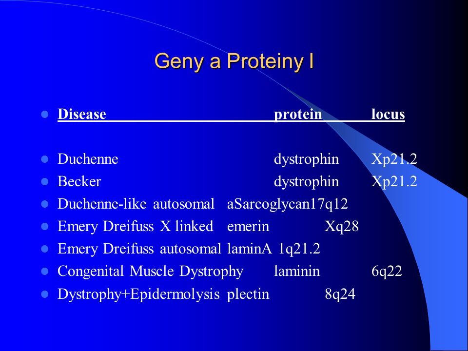 Geny a Proteiny I Disease protein locus Duchenne dystrophin Xp21.2