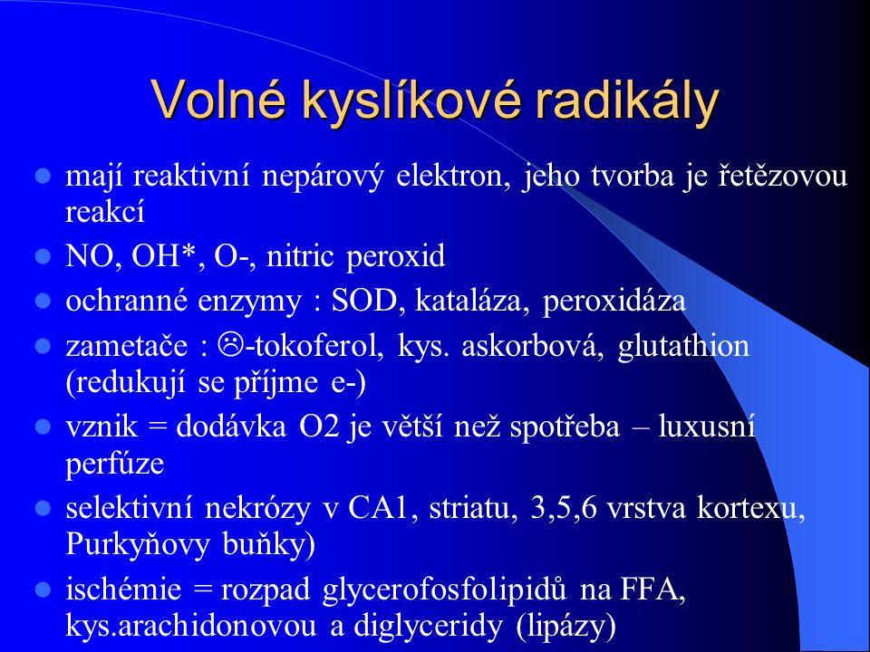 Volné kyslíkové radikály