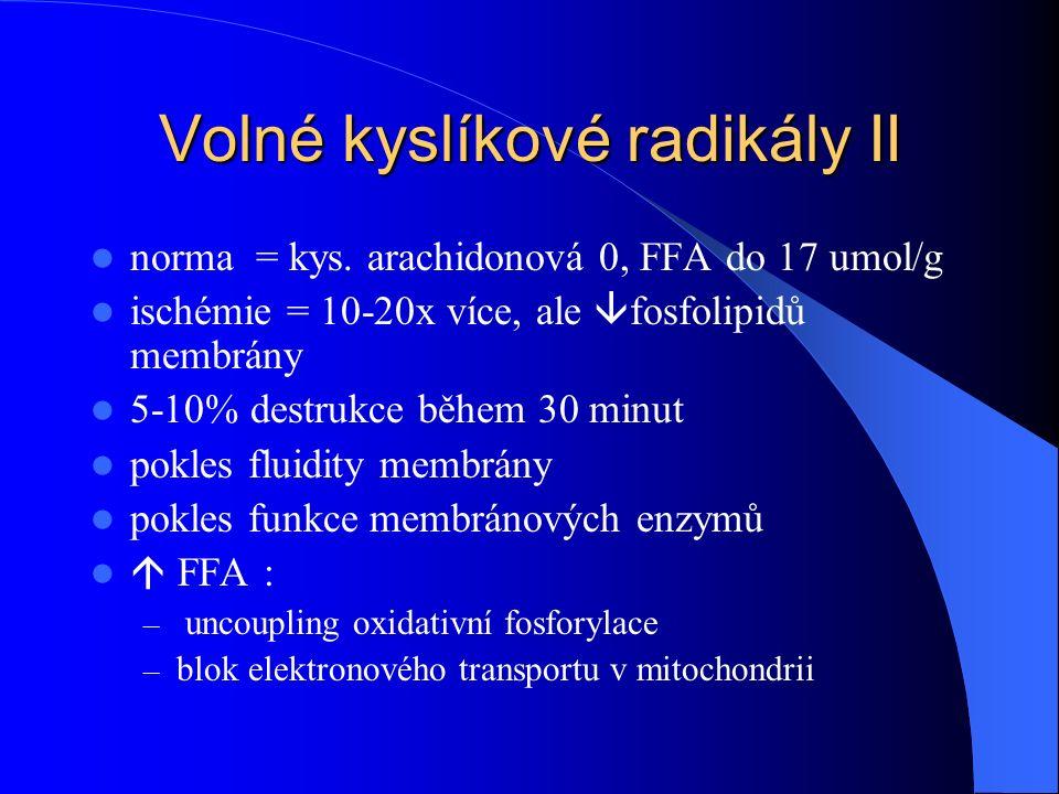 Volné kyslíkové radikály II