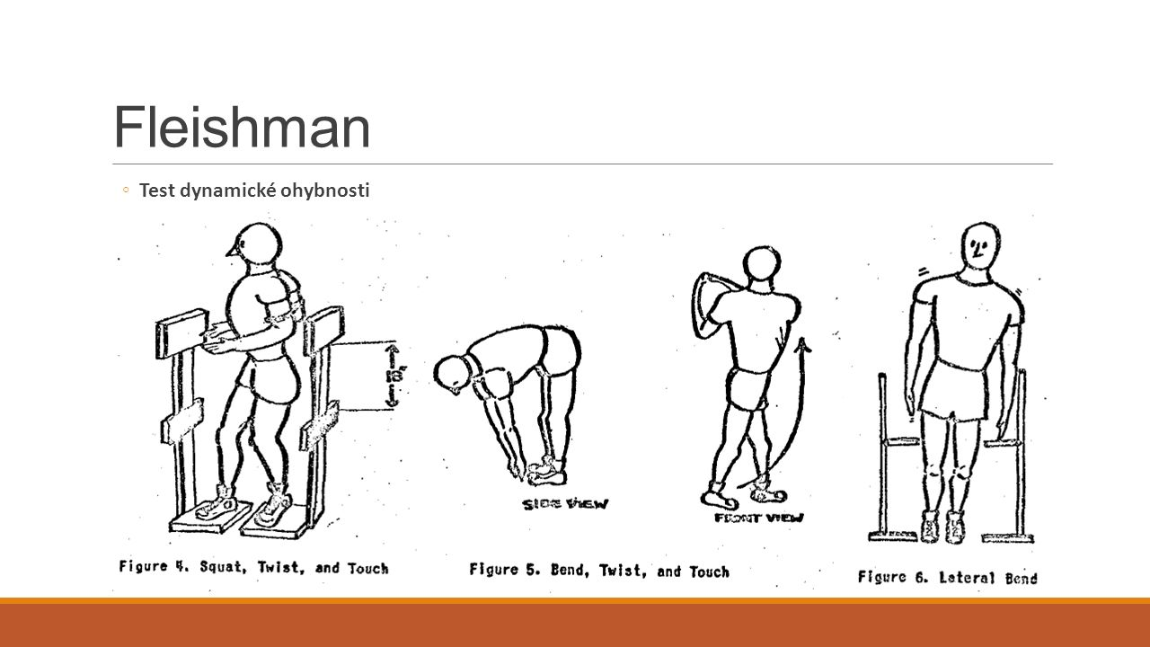 Fleishman Test dynamické ohybnosti