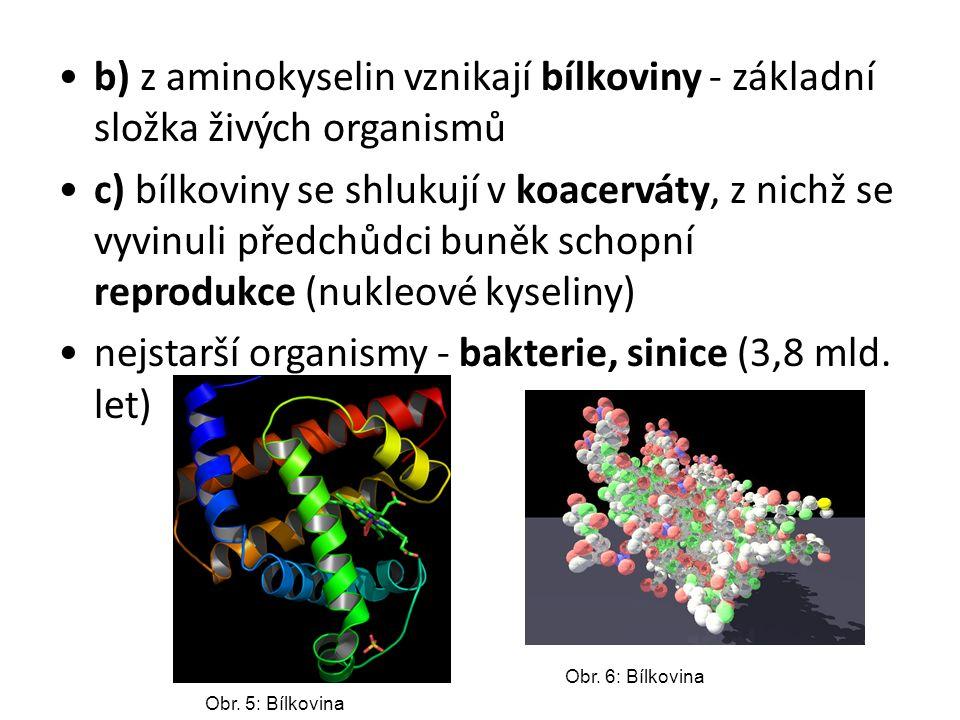nejstarší organismy - bakterie, sinice (3,8 mld. let)