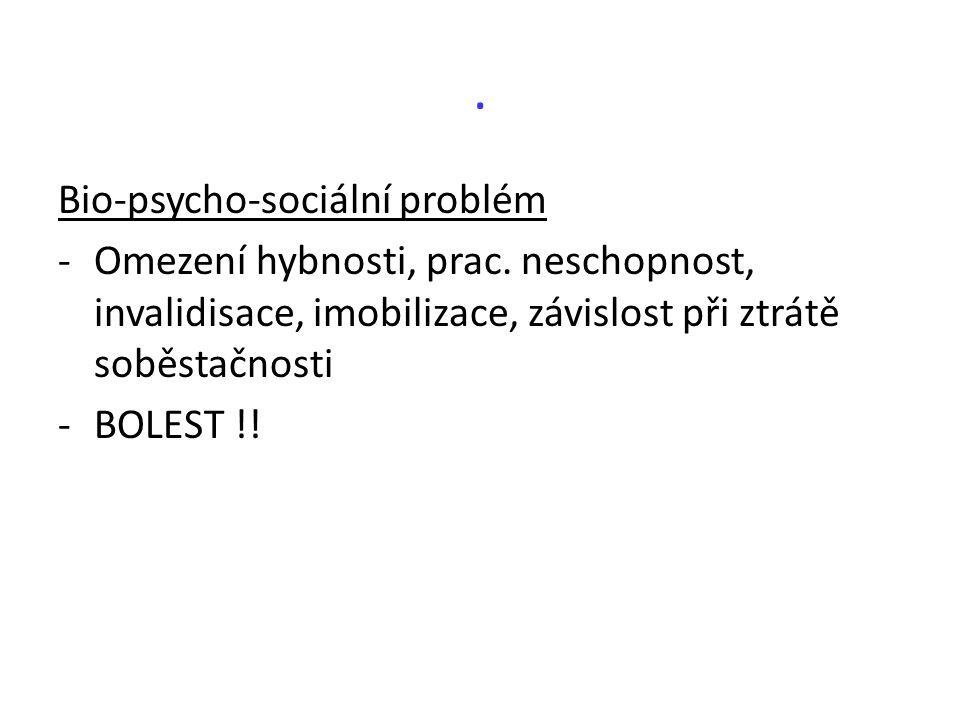 . Bio-psycho-sociální problém