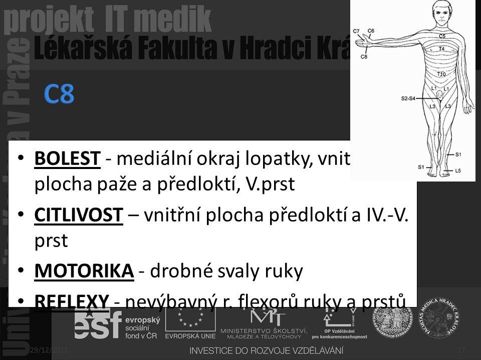 C8 BOLEST - mediální okraj lopatky, vnitřní plocha paže a předloktí, V.prst. CITLIVOST – vnitřní plocha předloktí a IV.-V. prst.