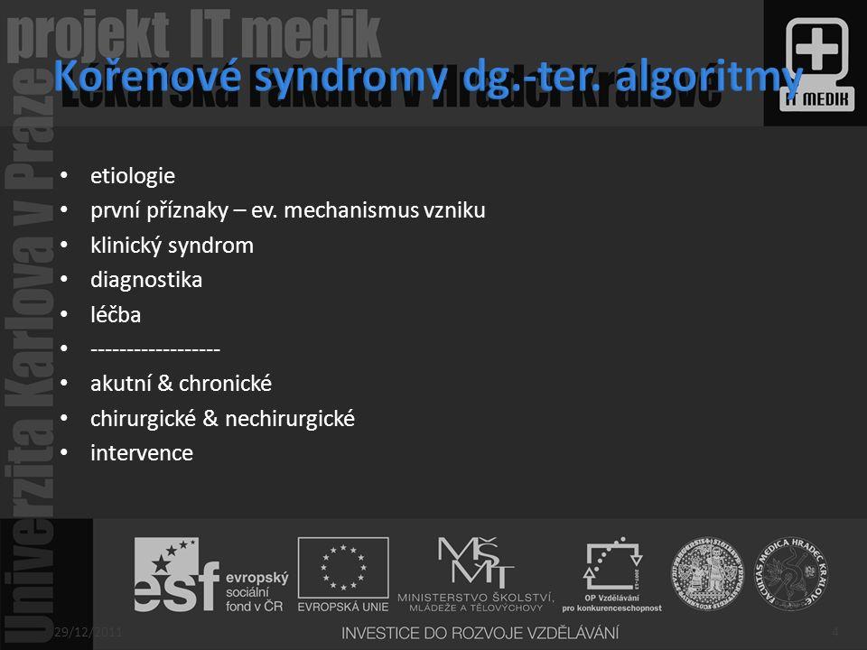 Kořenové syndromy dg.-ter. algoritmy