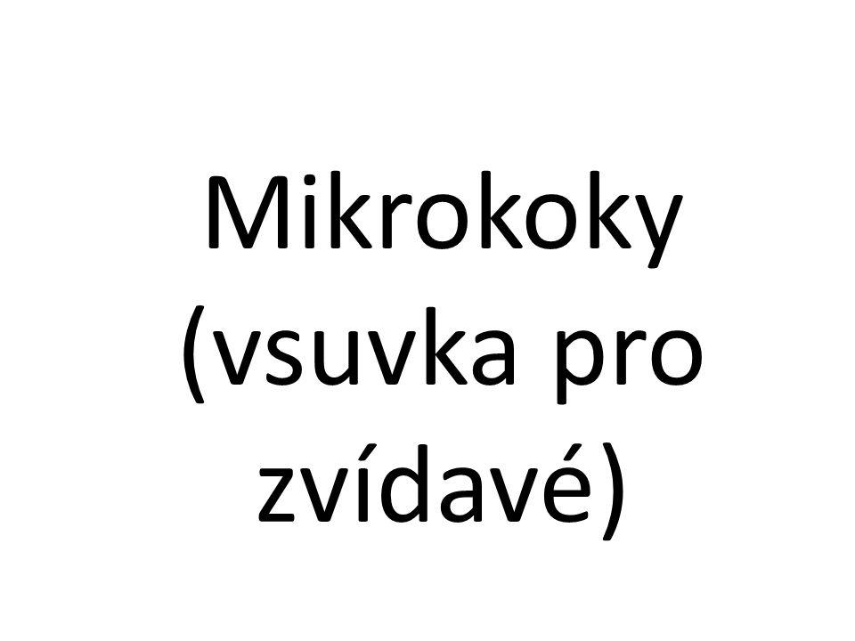 Mikrokoky (vsuvka pro zvídavé)