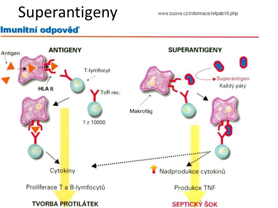 Superantigeny www.zuova.cz/informace/nrlpab16.php
